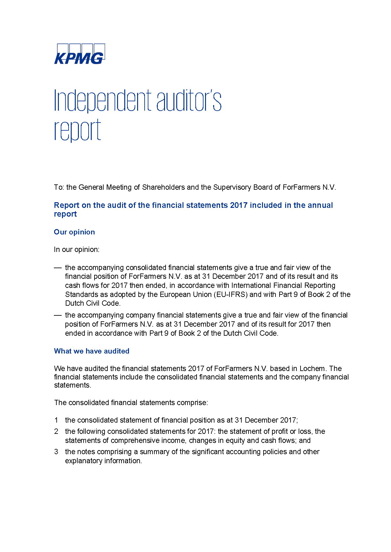 Forfarmers annual report 2017 254 independent auditors report independent auditors report thecheapjerseys Choice Image